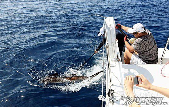 中国企业,2014 2014-04-14  2014中国游艇业10大趋势