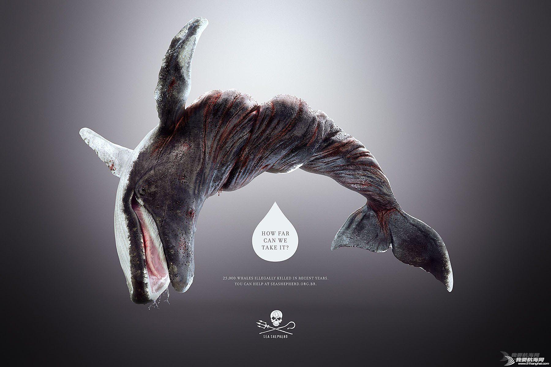平面设计,海洋,动物 扭曲的海洋、生物