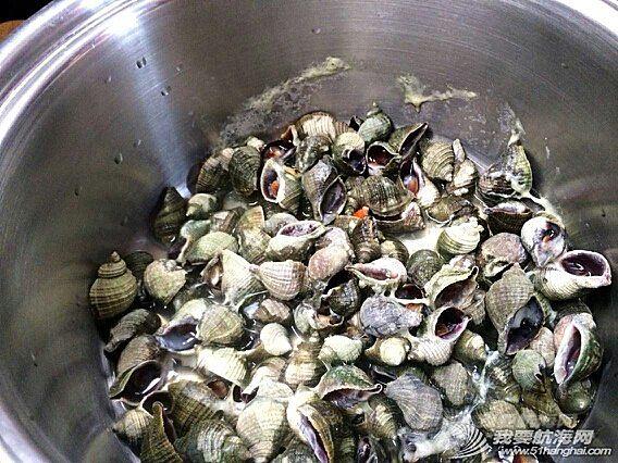 得益于阿拉斯加丰富的物产,第二梦想号采野果、捡海螺当午餐