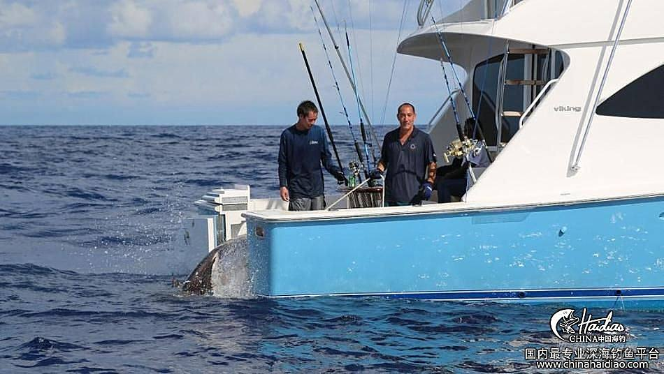佛罗里达 17岁少年佛罗里达捕获314公斤剑鱼