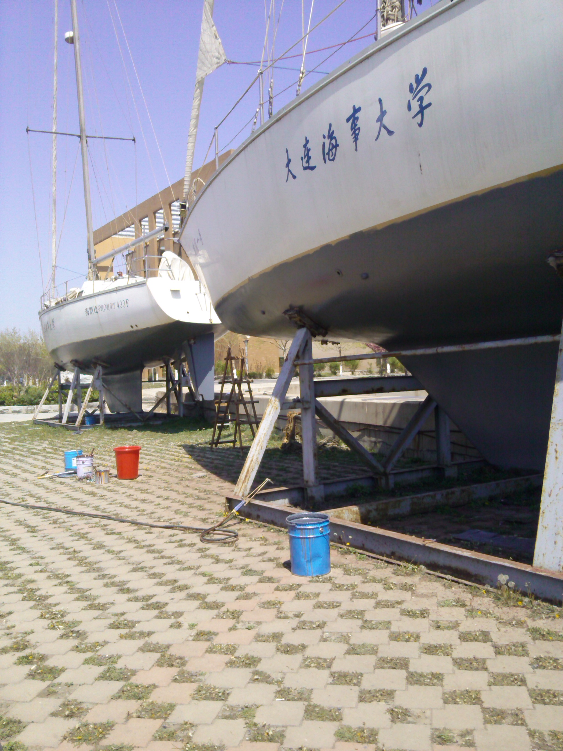 大连海事,图片,大学,帆船 大连海事大学帆船队之我们的那些事 爱船,就要爱他的一切!