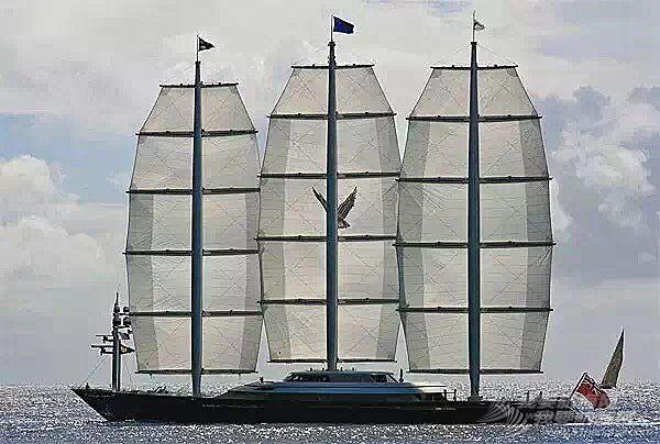 我为了帆船活着-你为了梦想与自由吗?
