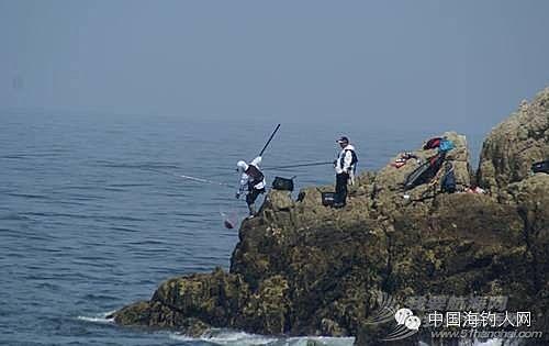 【海钓技巧】海钓的鱼饵技巧