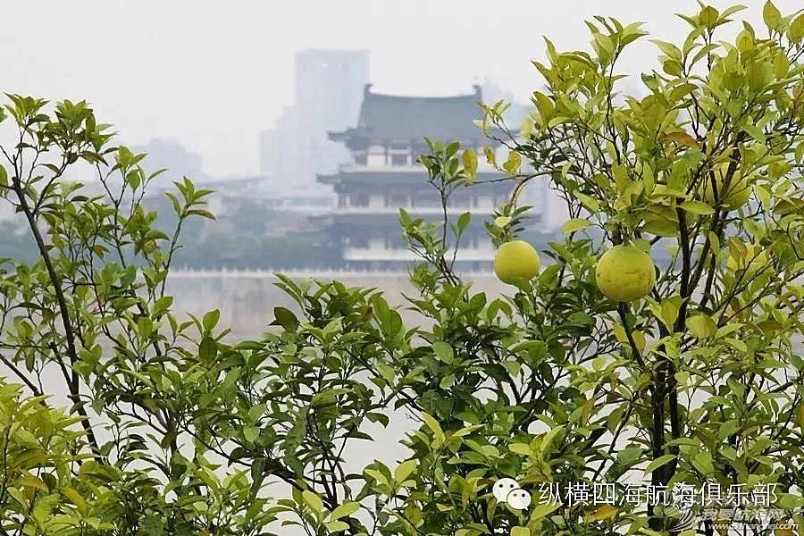 """湘江上百舸争流!相约""""中国第一洲""""-橘子洲"""