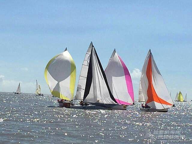 """""""东海杯""""帆船赛,广州帆船协会战况。"""