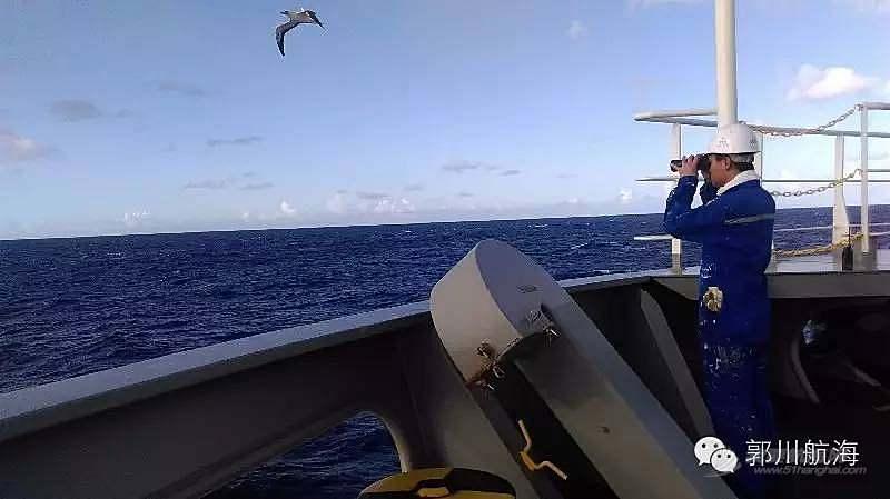 夏威夷,青岛旅游,最新动态,营救计划,专家团 10月31日搜救最新动态:救人救船 马不停蹄