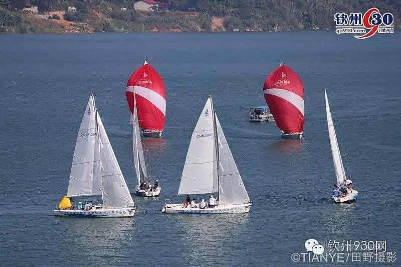 @钦州人,速来报名!超酷的帆船试驾带你免费体验带你飞!