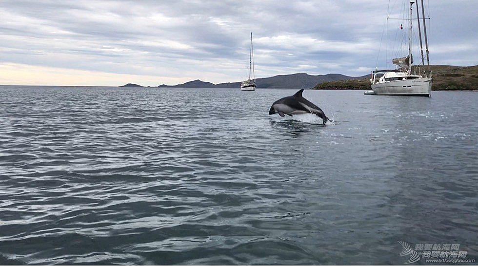 《海角孤舟》(50)结伴帆游合恩角群岛