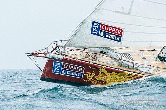 """""""青岛号""""船队荣归母港 克利伯环球帆船赛第八赛程名列第五"""