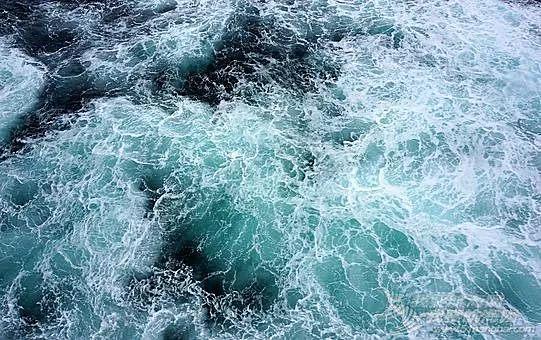 做到这6步,让你的船队从容面对海上任何突发状况