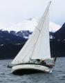 带有自动驾驶仪的一些帆船生活图片
