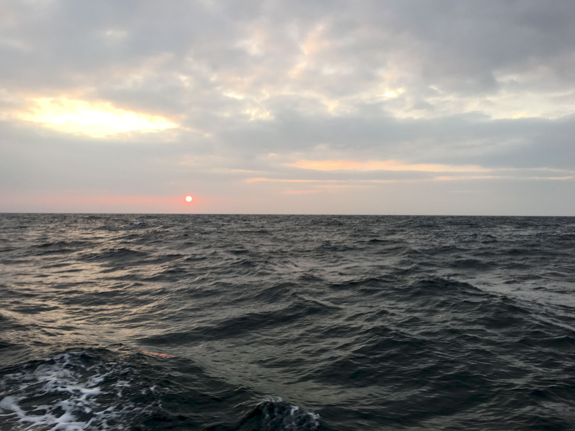 008-IMG_2598_千帆俱乐部我要航海网帆船队-2016威海-仁川国际帆船赛.JPG