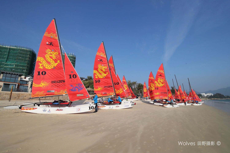 运动型小帆船Hobie 16与 Weta的对比 AG3I3279_看图王.jpg