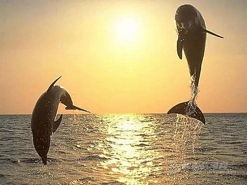 爱护水资源,和司南杯一起迎接美好世界