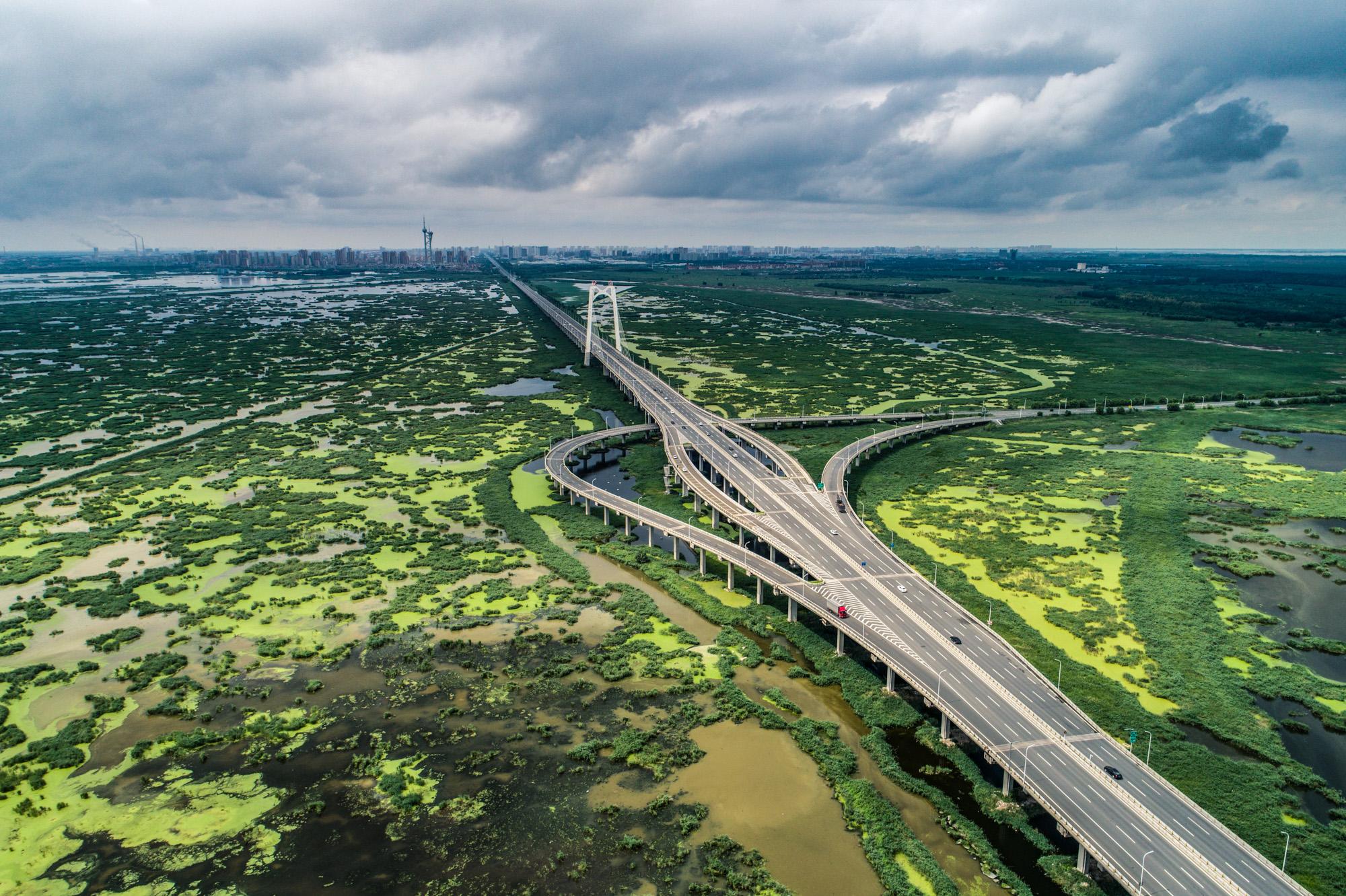 大桥全景2.jpg