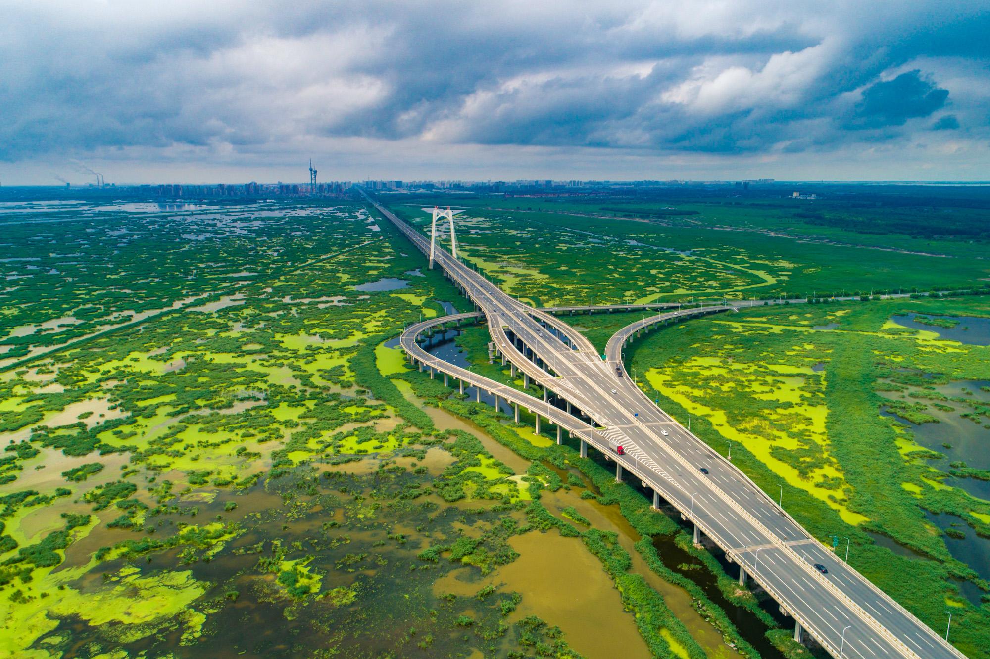 大桥全景2-2.jpg