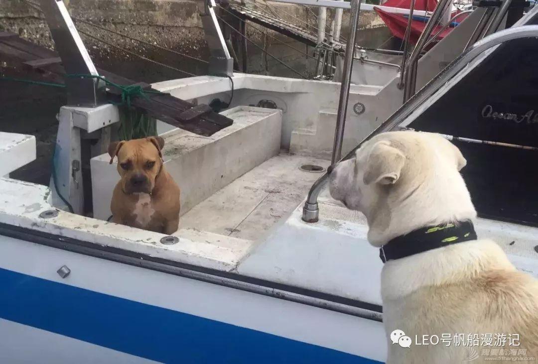 帆船游记三十:Island王子罗曼史——航海狗的爱恨情仇w8.jpg