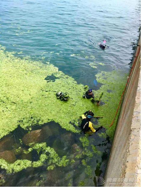 【Blue Friend】我们的海洋,我们来守护:蓝誉潜水7月工作简报w27.jpg