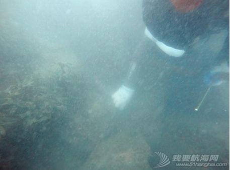 【Blue Friend】我们的海洋,我们来守护:蓝誉潜水7月工作简报w30.jpg