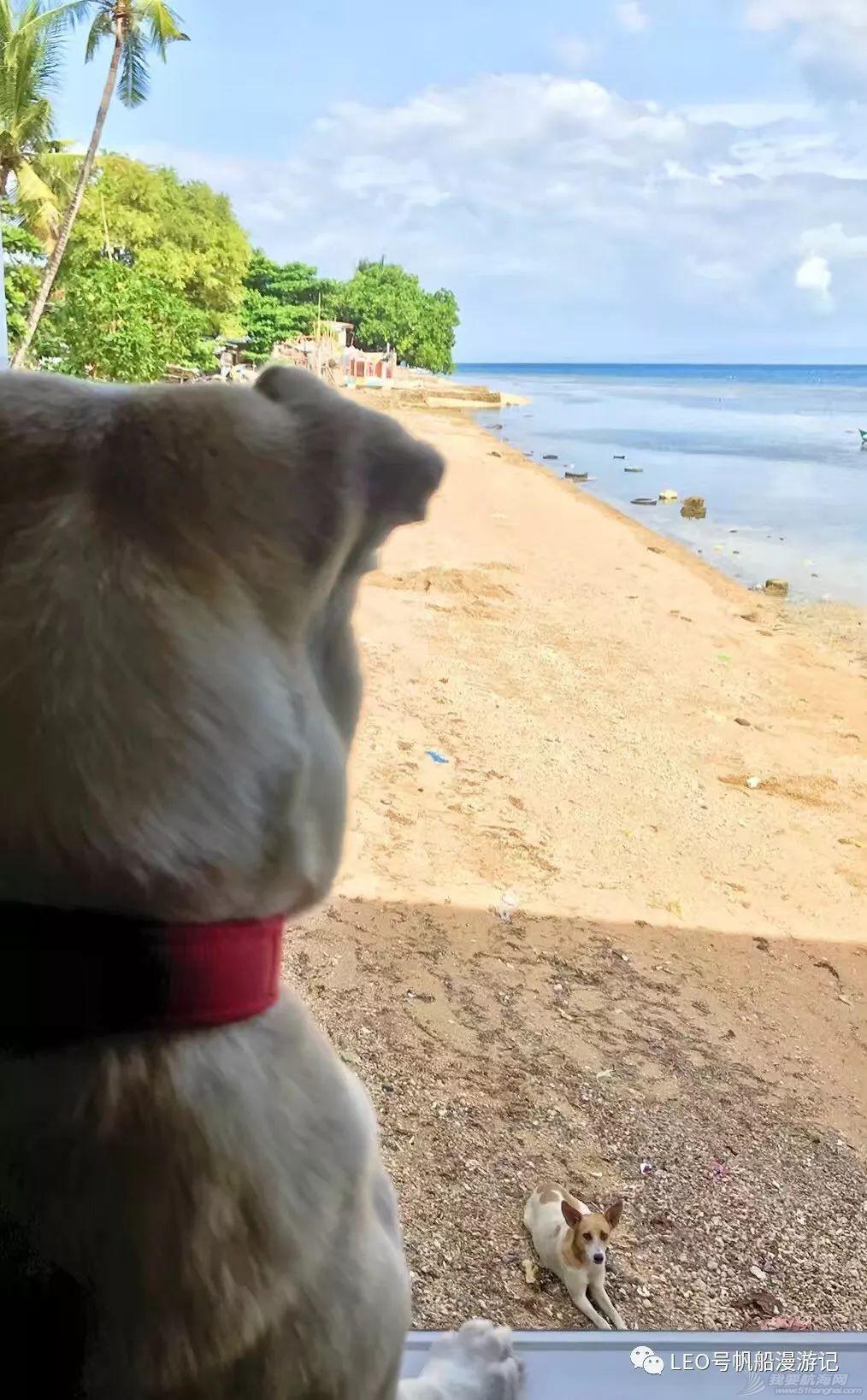 帆船游记三十:Island王子罗曼史——航海狗的爱恨情仇w21.jpg