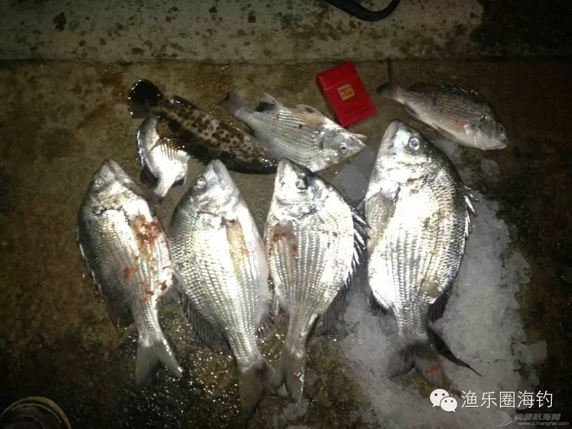 渔乐圈钓友近期渔获精选w6.jpg