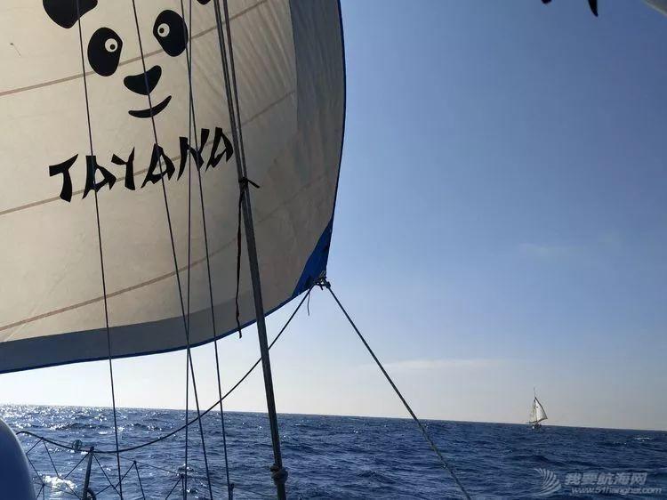 我的航海日记(25)不期而遇的巴哈哈哈800海里帆船赛w10.jpg
