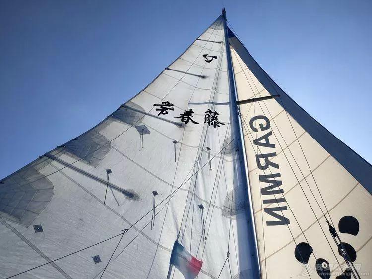 我的航海日记(25)不期而遇的巴哈哈哈800海里帆船赛w9.jpg