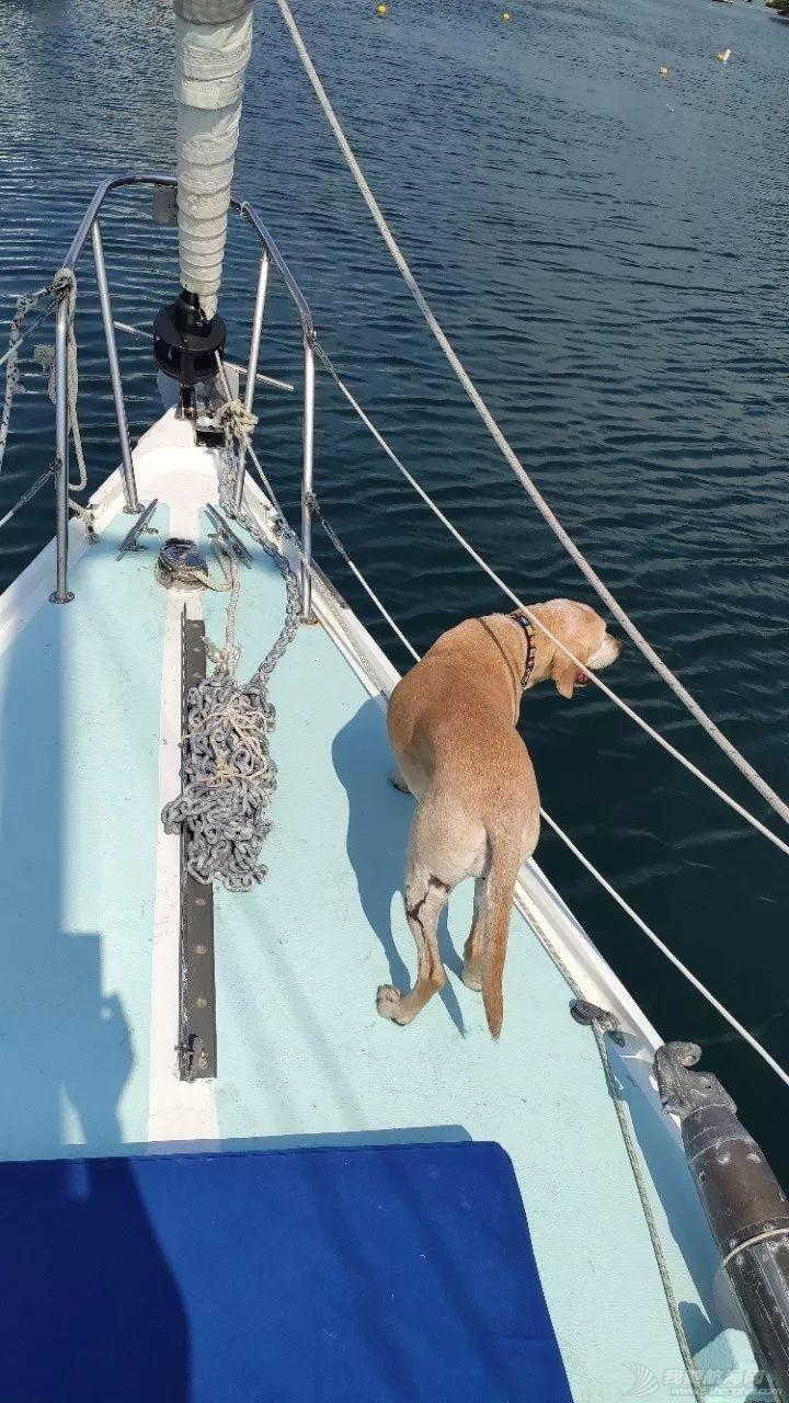 墨西哥阿卡普尔科帆船赛w12.jpg