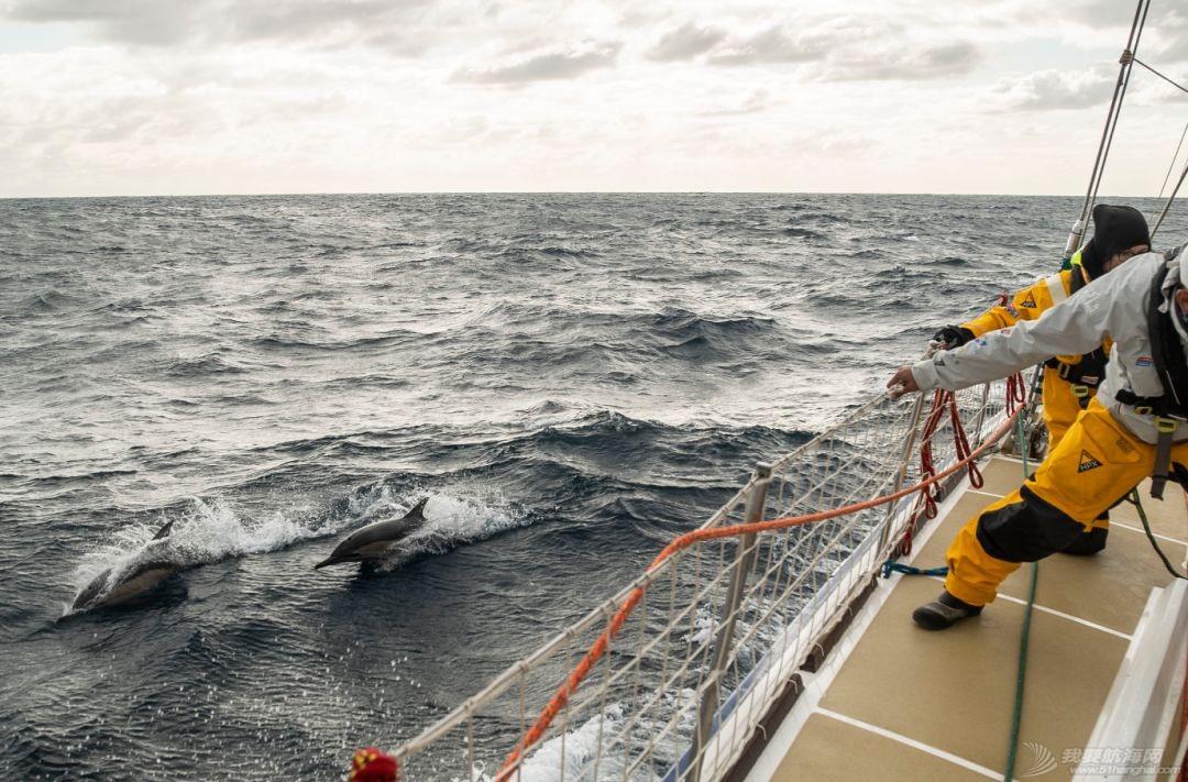 """""""咆哮西风带""""技能get!珠海号顺利抵达澳大利亚弗里曼特尔w14.jpg"""