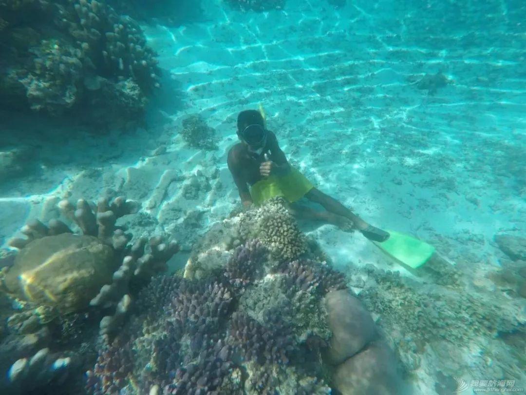 巴新奇遇:用两罐啤酒救下一只海龟,还收编了一个岛的兄弟w32.jpg