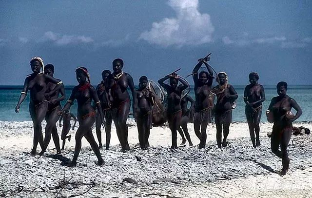 与世隔绝6万年的小岛,却是见人就杀的危险禁区w21.jpg