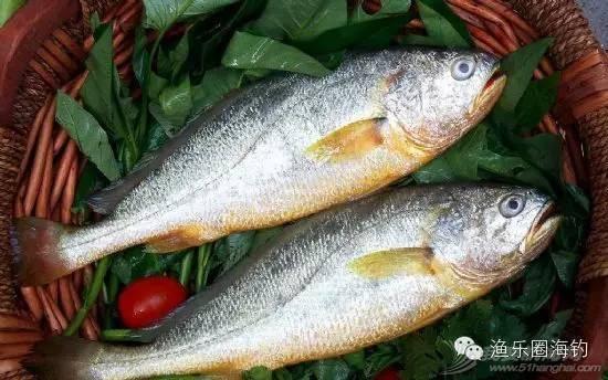 各种常见海鱼的营养价值.w6.jpg