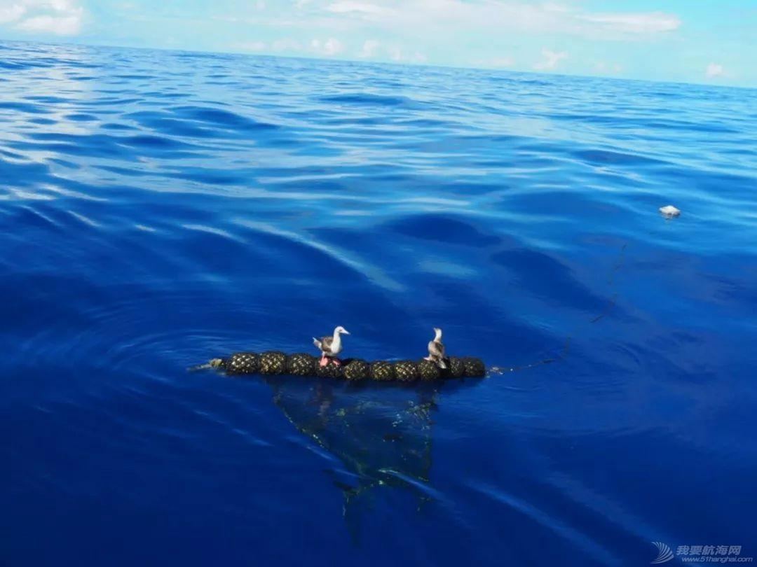 梦想号大溪地航行去汤加寻找鲸鱼的踪迹w49.jpg