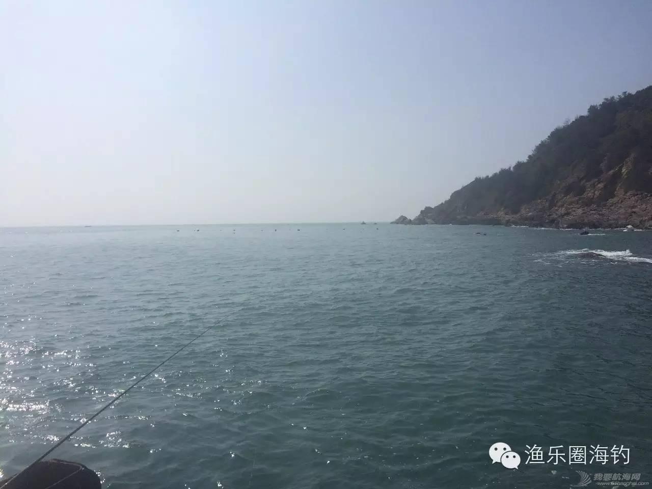 """曾经沧海难为水,一""""龟""""成名天下知.w4.jpg"""