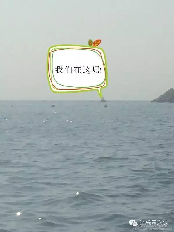 """曾经沧海难为水,一""""龟""""成名天下知.w6.jpg"""