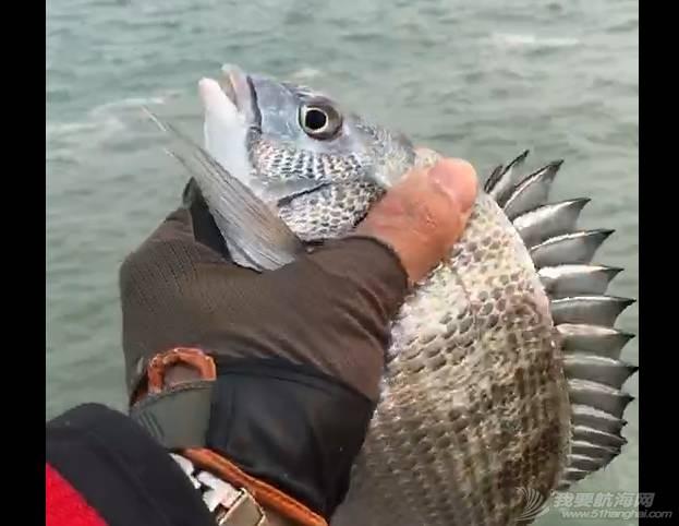 做个靠谱的钓鱼人,小鱼放生、垃圾带走.w6.jpg