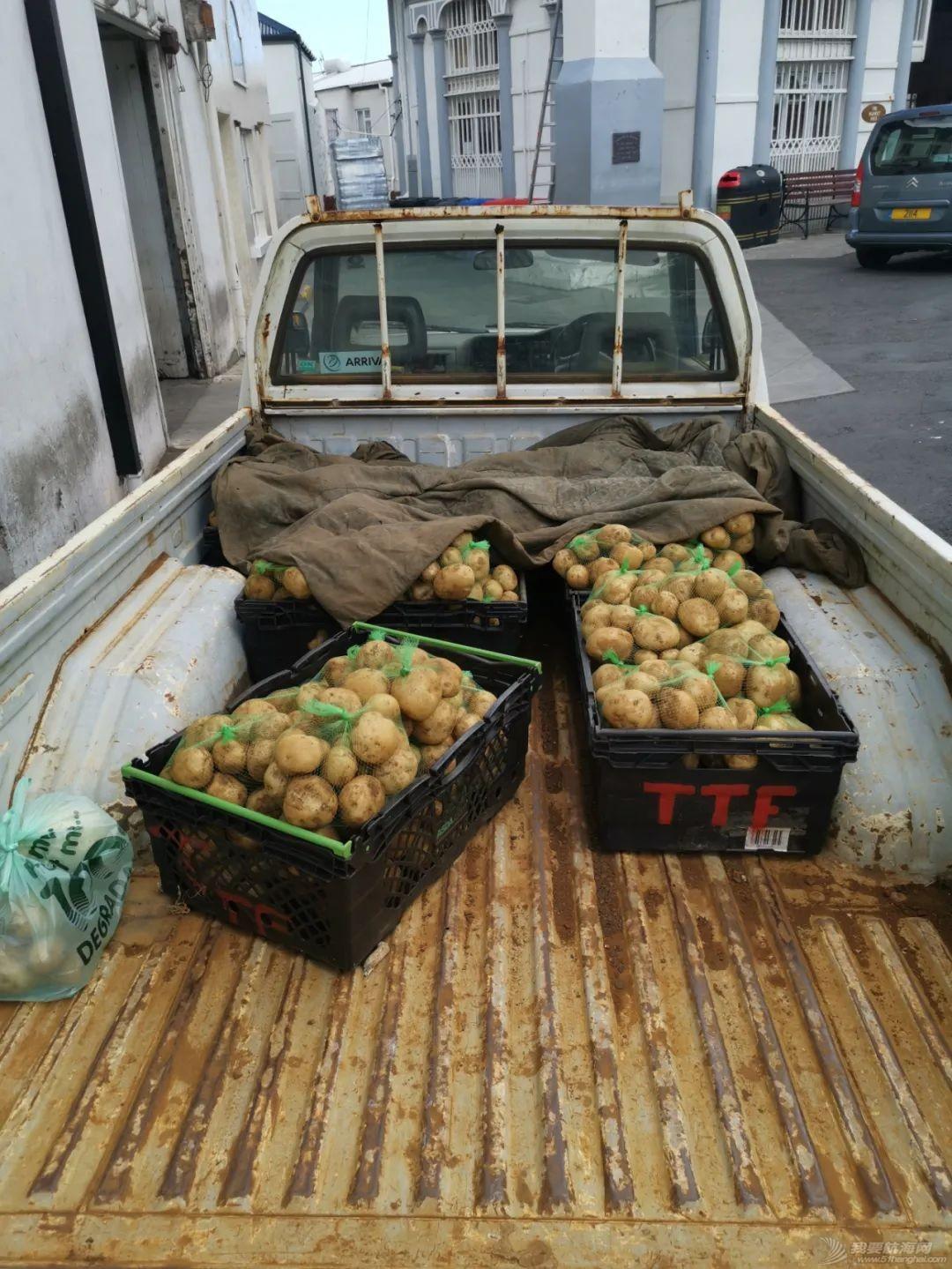 23只龙虾换不到两公斤土豆,疫情期间被困孤岛纪实(上)w47.jpg