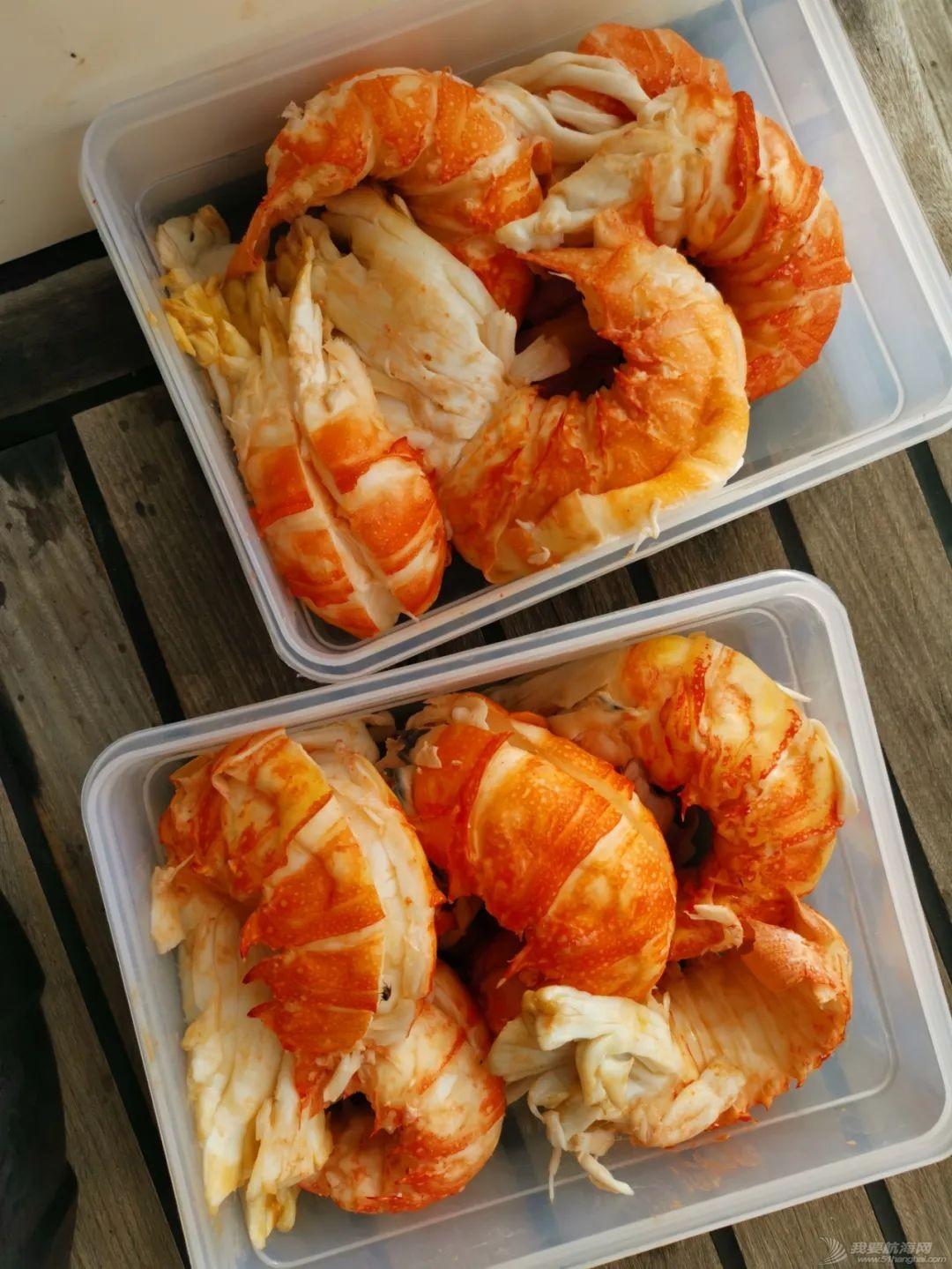 23只龙虾换不到两公斤土豆,疫情期间被困孤岛纪实(上)w68.jpg
