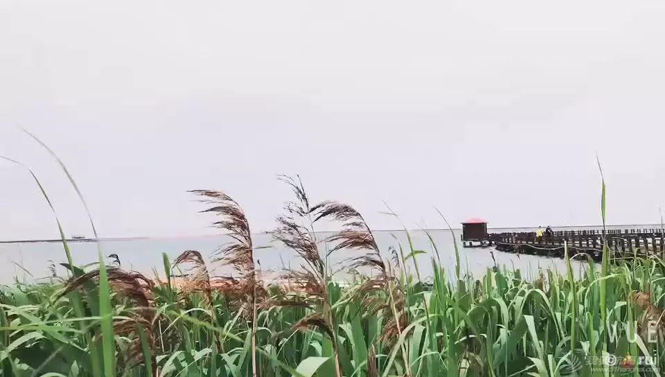 2021帆船夏令营之华东篇|中帆协小帆船认证培训中心营业啦③w30.jpg
